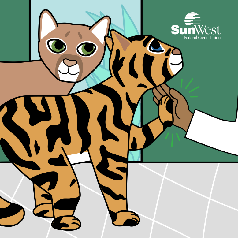 SunWest-Federal-Credit-Union-Kids-Pounce-Paws-Q4-Square-1_FIN-01